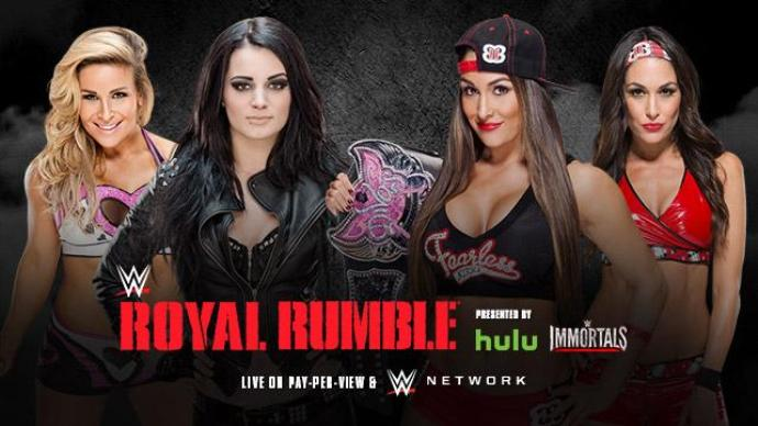 Royal Rumble 2015 Bellas Paige Natalya